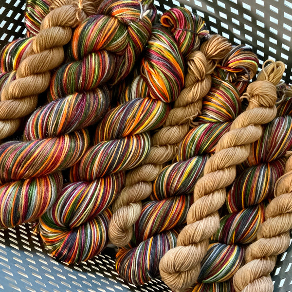 Platform 9&3/4 - self striping sock yarn with 20g mini skein
