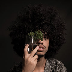 guy with afro hair with plant in front of him, black background