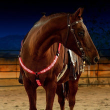 Load image into Gallery viewer, LED Horse Breast Collar - Replaceable Battery Powered - Free Shipping