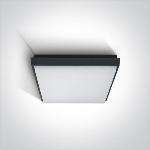 ONE Light Anthracite Ceiling Mounted Led 20w Warm White Ip54 230v 5291889039419 67362A/AN/W