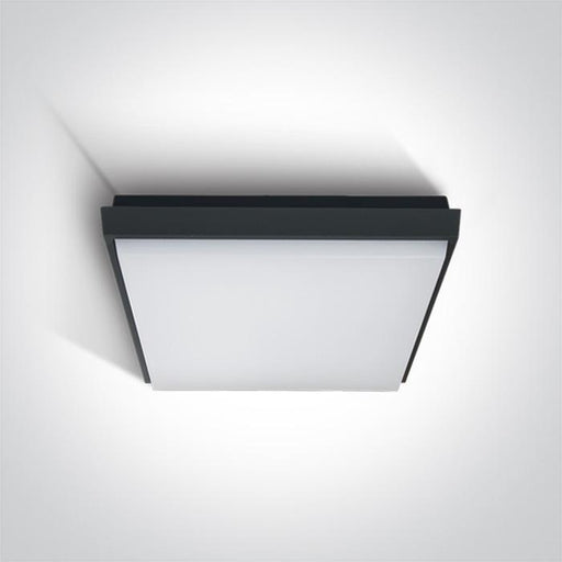 ONE Light Anthracite Ceiling Mounted Led 30w Warm White Ip54 100-240v 5291889040804 67363A/AN/W
