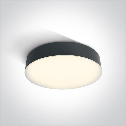 ONE Light Anthracite Led Ceiling Mounted 21w Warm White Ip65 230v 5291889049005 67390/AN/W