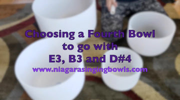Edward : Adding a 4th Bowl to a Set