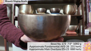 Bowl 173 : A#3-16 Himalayan Singing Bowl 231 hz