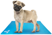 Yoga Mats for Dogs