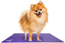 Load image into Gallery viewer, Pet Yoga Mat: X-Small