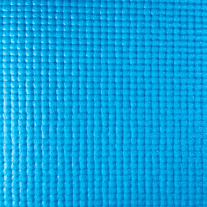 LIGHT BLUE Pet Yoga Mat
