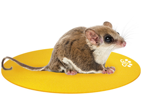 ROUND MINI Pet Yoga Mat: Medium (9