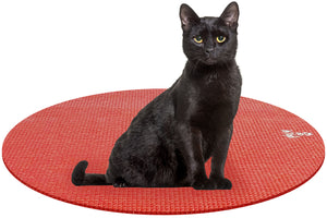 Cat on Round Pet Yoga Mat