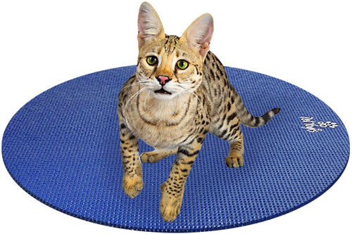 Savannah Cat on Round Pet Yoga Mat