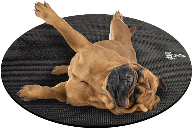 Bullmastiff Dog on Round Pet Yoga Mat