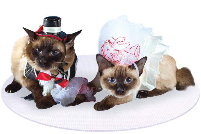 Bride and Groom Siamese Cats on White Round Wedding Pet Mat