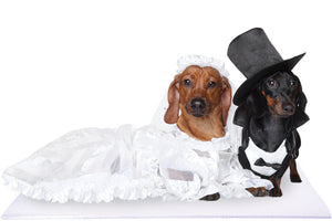 Bride and Groom Dachshund Dogs on White Pet Wedding Mat