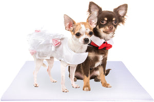Bride and Groom Chihuahua Dogs on White Wedding Pet Mat