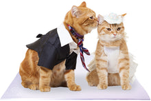 Load image into Gallery viewer, Bride and Groom Ginger Cats on White Pet Wedding Mat
