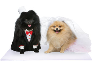 Bride and Groom Pomeranian Dogs on White Pet Wedding Mat