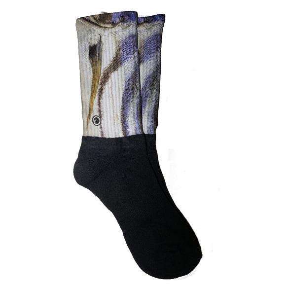 Roosterfish Fish Sock Wishiwazfishin