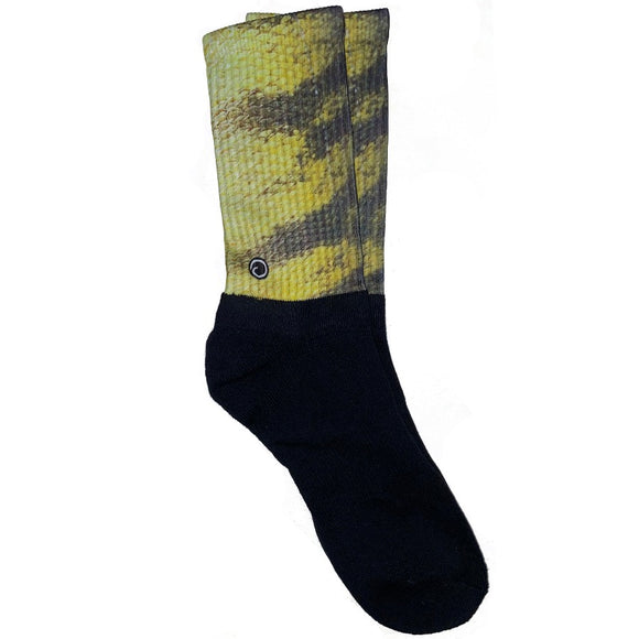 Perch Fish Socks