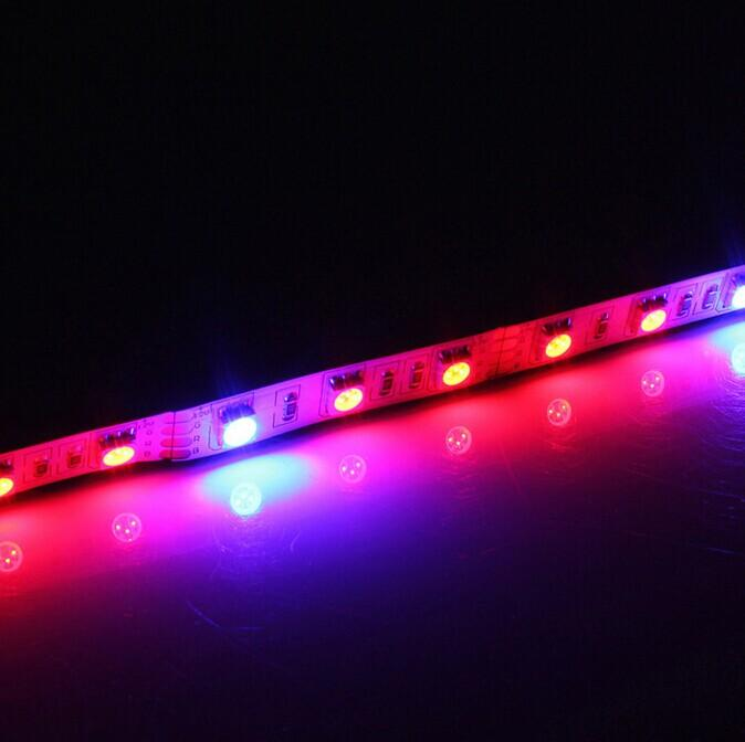 Plant Growth RED:BLUE /660nm:460nm  LED Grow Light  SMD5050 60LEDs  14.4W Per Meter Strip - LEDStrips8