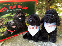 Jack and Rugby Plush Toys