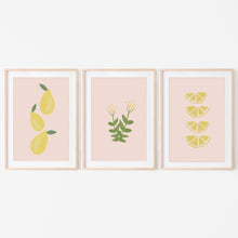 Load image into Gallery viewer, Leafy Lemon Blooms Print Bundle