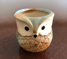 Load image into Gallery viewer, Little ceramic owl planter pots