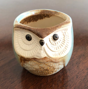 Little ceramic owl planter pots