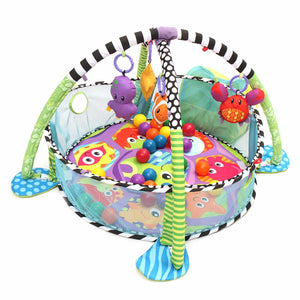 Turtle Baby Activity Gym