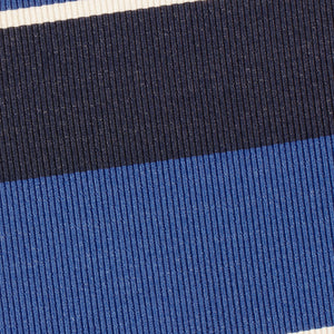 Blue and Navy Stripe Tie
