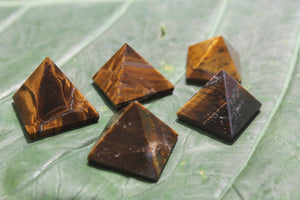 Fine polished Tiger Eye - Pyramid 12 -16 MM 10 pieces