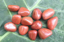 Load image into Gallery viewer, Red Jasper Crystal Healing Stone