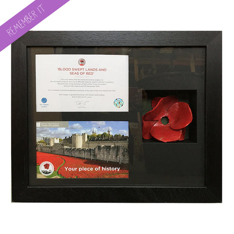 Remembrance Poppy Display