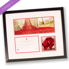 Luxury Poppy Display Frame