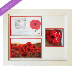 Hand Made Ceramic Poppy with Frame & Prints - (poppy included)