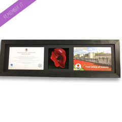 Remembrance Poppy Display Long