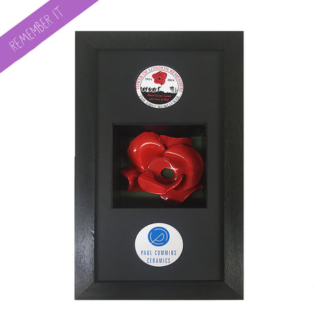 Remembrance Poppy Display Small Framethat