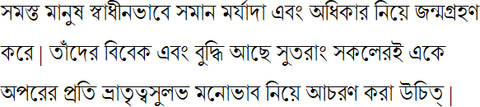 Bengali sample text