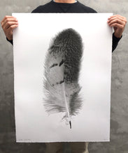 Load image into Gallery viewer, FEATHER STUDY #7