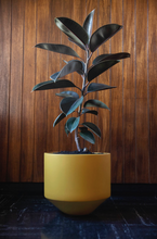 Load image into Gallery viewer, CONE PLANTER - SAFFRON LARGE