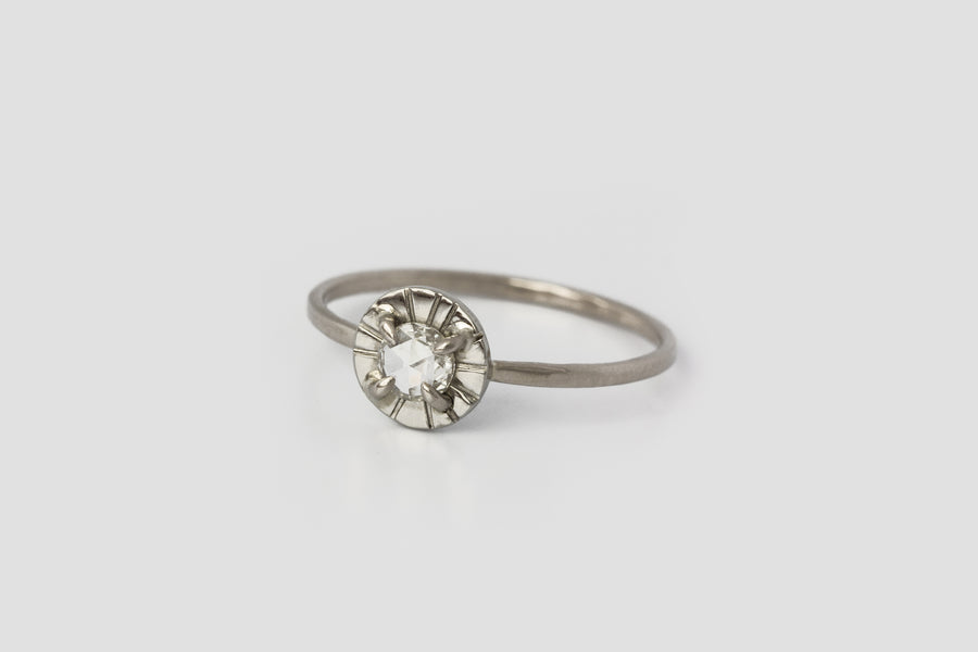 White Diamond Etruscan Ring <br> ✧ 14k White Gold