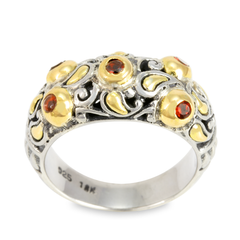 Garnet Sterling Silver Ring with 18K Gold Accents