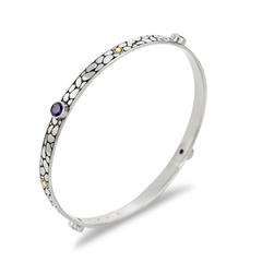 Iolite Sterling Silver Bangle with 18K Gold Accents