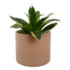 Capri Planter Pot