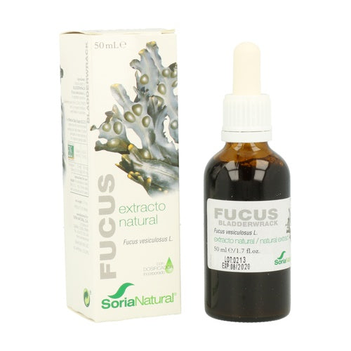 Fucus extracto XXI s/alc 50ml