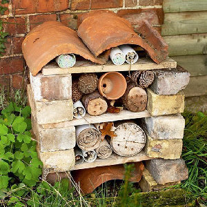 Nature-friendly spaces - making an insect hotel