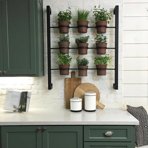 Vertical Herb Garden on a white Annie Sloan painted wall