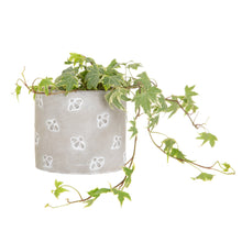 Load image into Gallery viewer, Queen Bee Cement Planter Large