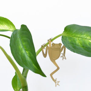 Tree Frog Plant Decoration