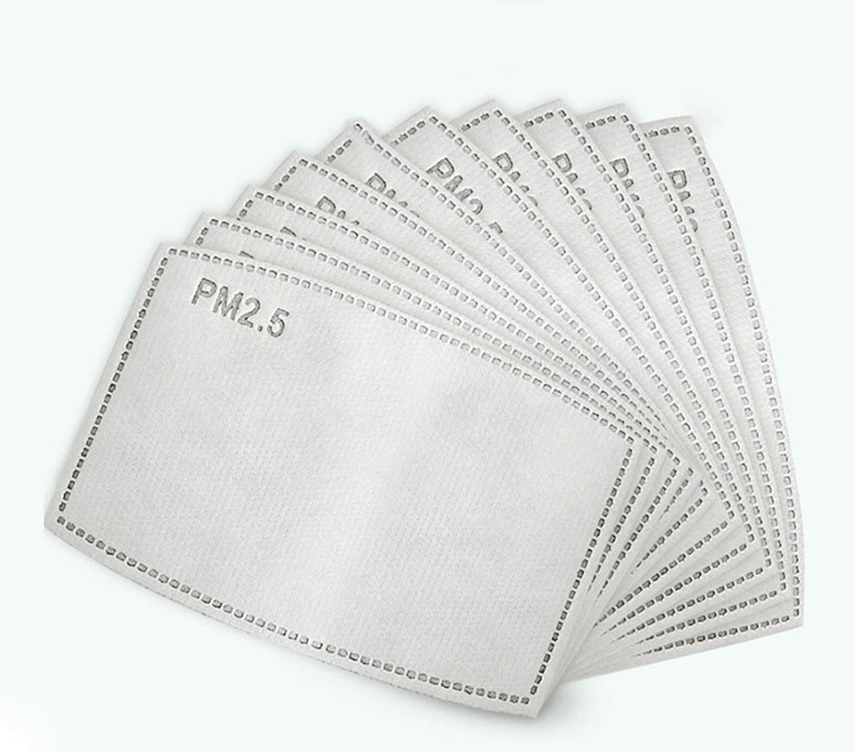 PM 2.5 Filters - Pack of 10 - Viso Designs
