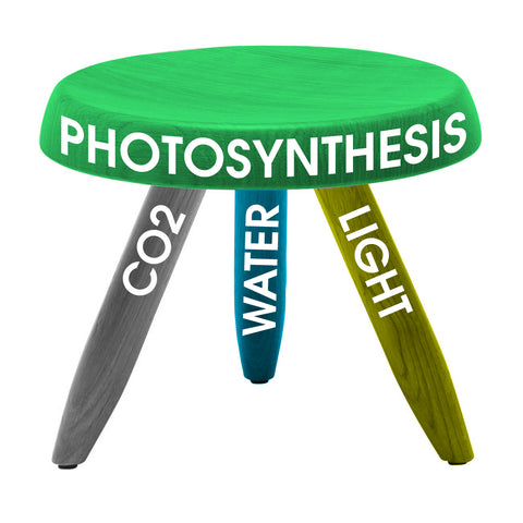 The 3 pillars of Photosynthesis